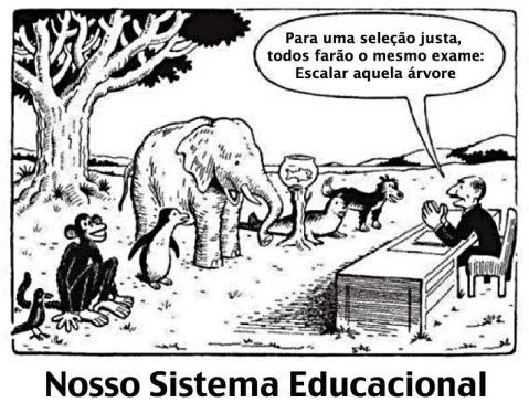 O sistema educacional (?) brasileiro